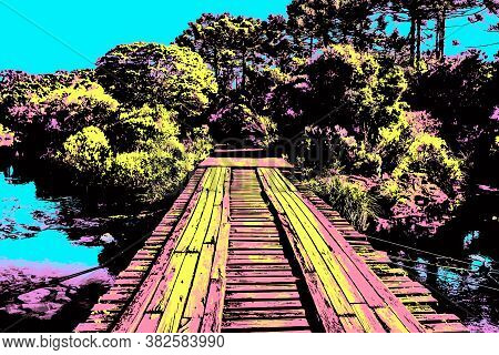 Wooden Bridge Over Creek In Forest Near Cambara Do Sul. A Small Town With Amazing Natural Tourist At