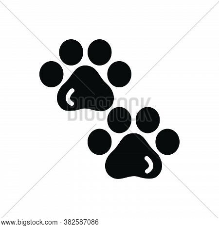 Black Solid Icon For Pawprints Veterinarian Animal Foot Footprint Grooming Paw Pet