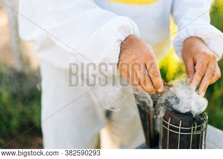 Close-up Of Hands Of Unrecognizable Beekeeper Fills The Bee Smoker With Small Woods. Closeup Of Apia