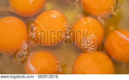 Background Image Of Egg Yolk In A Bowl. Egg Yolks