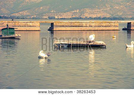 Paisaje del lago Orestiada
