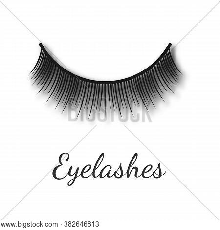 Curving Women False Eyelashes Template Realistic Vector Illustration Isolated.