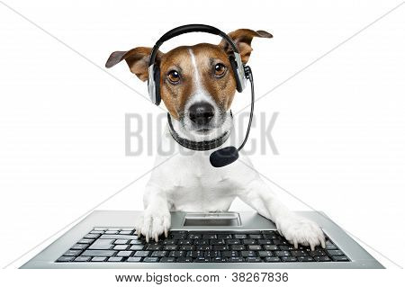 dog computer pc tablet helping and listening poster