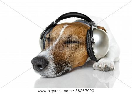 Dog listen to music with a music player poster