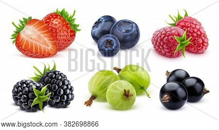 Forest Berries Collection Isolated On White Background
