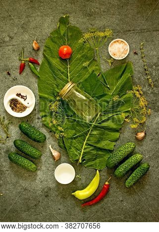 Pickled Cucumbers Background. Cucumbers, Dill, Peppers, Spices, Peppercorns, Horseradish Leaves, Cur