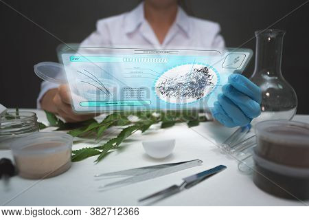 Soil Samples Analysing Concept. Scientist With A Sample Of Soil And Digital Tablet With Researching