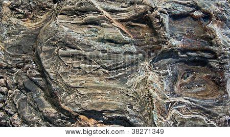 Sea Worn Rock