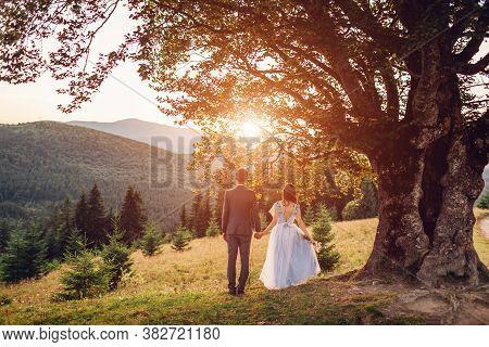 Loving Newlyweds Couple Walking In Mountains At Sunset. Groom And Bride Enjoy Landscape Under Tree.
