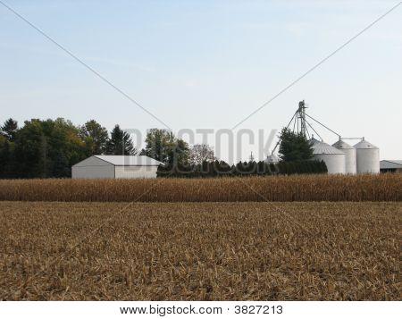 Farm With Grain Bins