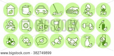 Big Set Eco Products Icons.for A Company Providing Eco Products For The Home, Cars, Care Cosmetics F