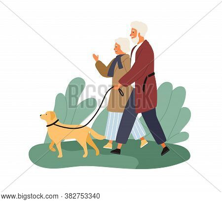 Smiling Elderly Couple Walking With Dog At Park Vector Flat Illustration. Happy Mature Man And Woman