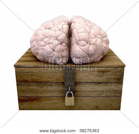 Think Outside The Box Brain