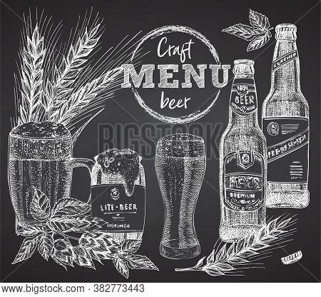 Set Bottles Craft, Organic Beer, Beer Can, Wheat Ear, Hopon Black Chalk Board Background Vintage Han