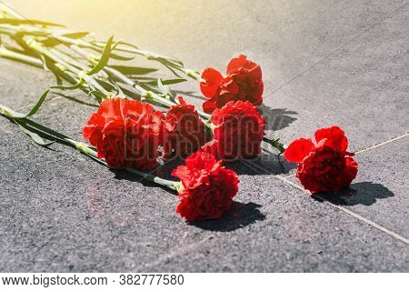 Carnations On A Marble Slab Close-up. Laying Flowers On The Memorial. Day Of Remembrance And Mournin