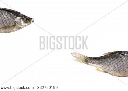 Pieces Of Dried Roach Isolated On The White Background With Copy Space. Dried Roach Is A Good Snack