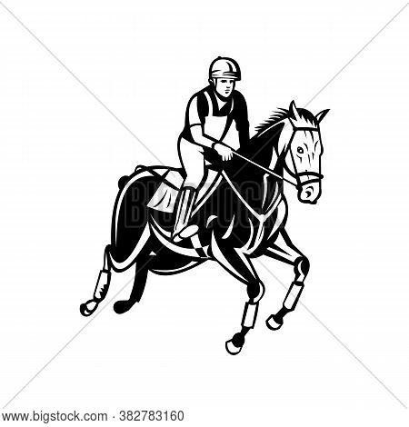 Retro Black And White Style Illustration Of An Equestrian Riding Horse Show Jumping, Stadium Jumping