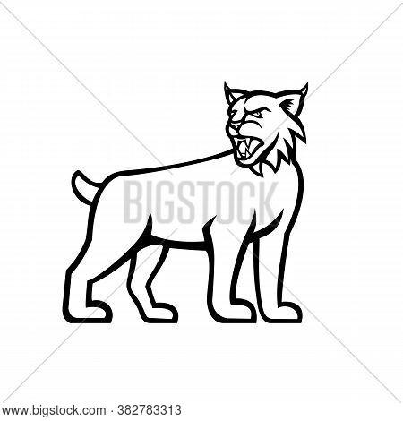 Black And White Illustration Of A Lynx, Canada Lynx, Eurasian Lynx Or Bobcat,a Medium-sized Wild Cat