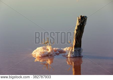 Salt crystals on old wooden pillar in salt lake water