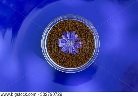 Chicory Granules With Chicory Flower For Caffeine Free Healthy Drink On Blue Background.