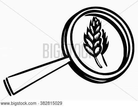 Hidden Sources Of Gluten. An Ear Of Wheat And A Magnifying Glass. Doodle Style Vector Illustration