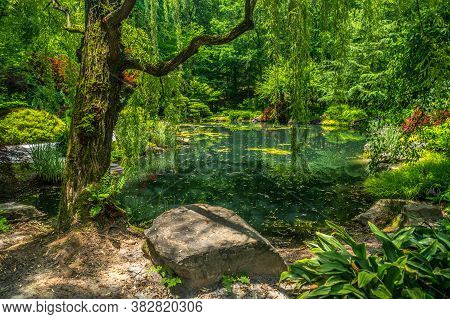 Ball Ground, Georgia/usa-06/08/18  Vibrant Colors In The Japanese Garden With The Trees Reflecting O