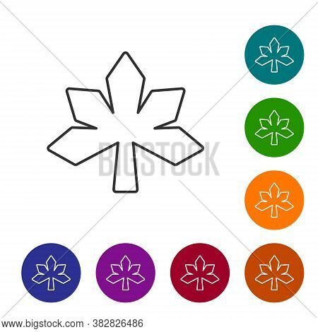 Black Line Chestnut Leaf Icon Isolated On White Background. Set Icons In Color Circle Buttons. Vecto