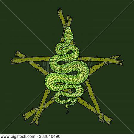 Coiled Snake Over Sticks Pentagram Detailed Illustration. Tribal Occult Serpent Isolated Over Dark G
