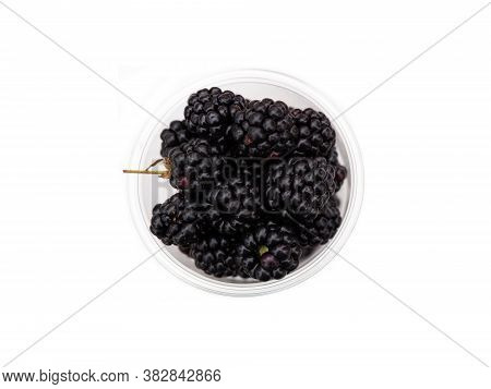 Ripe Garden Blackberry On Stems In A Clear Plastic Cup Isolated On A White Background. The Blackberr