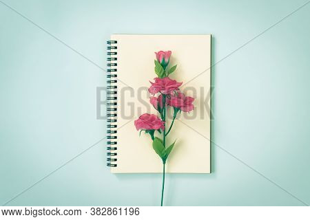 Spiral Notebook Or Spring Notebook In Unlined Type And Rose Flower At Center On Blue Pastel Minimali
