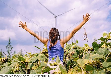 Wind Turbine In Sunflower Field. Sustainable Energy. Sustainable Electric Energy Source. Woman In Fr