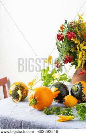 Beautiful Bouquet Of Ragweeds, Zinnia And Branches Of Viburnum In A Clay Pot, Fresh Harvest Of Pumpk