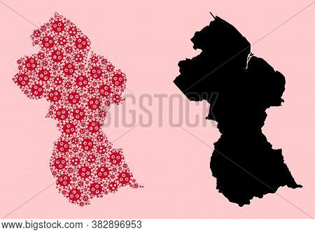 Vector Covid-2019 Virus Mosaic And Solid Map Of Guyana. Map Of Guyana Vector Mosaic For Clinic Campa