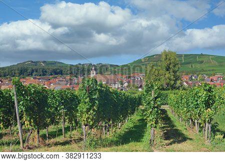 Kaiserstuhl Wine Region Near Vogtsburg In Black Forest,germany