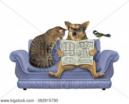 A Beige Dog In Glasses And A Cat Are Sitting On A Divan And Reading A Newspaper. A Bird Is Next To T