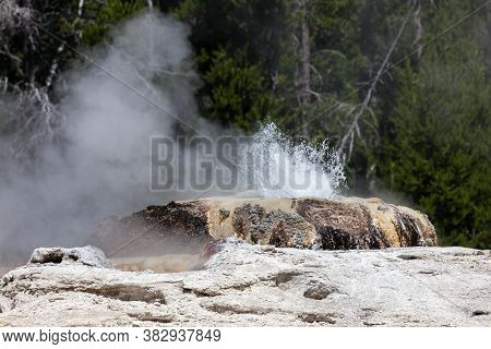 A Splash Of Hot Water And Steam Releasing From Bijou Geyser On A Sunny Summer Day In Yellowstone Nat