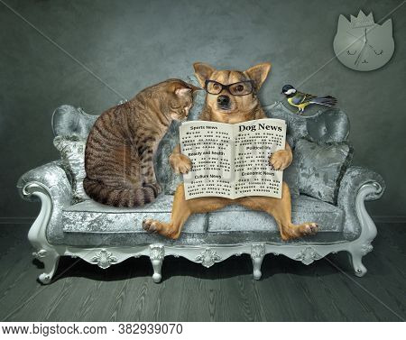 A Beige Dog In Glasses And A Cat Are Sitting On A Divan And Reading A Newspaper At Home. A Bird Is N