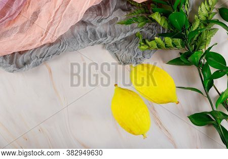 Religious Jews Choose Etrog Fruit Traditional Of Ritual Plants On The Eve Of Sukkot.