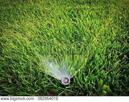 Water Sprinkler With Flow Of Water Coming Out Of It And A Lot Of Fresh Cut Green Grass