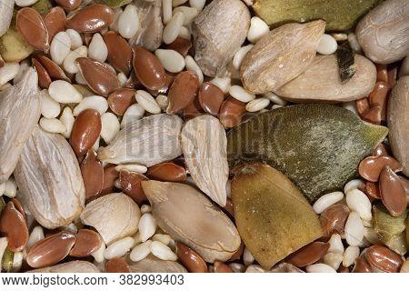 Mix Of Various Dried Seeds For Dressing Vitamin Salad Close Up Macro Photography Food Vegetarian Bac