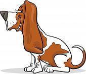Cartoon Illustration of Funny Purebred Spotted Basset Hound Dog poster