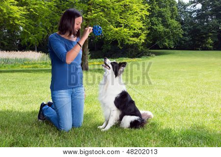 Woman in the park playing fetch with her border collie dog