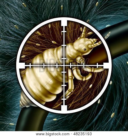 Kill lice and eliminating a hair problem as a medical concept with a close up of a louse insect in a crosshairs target with an infestation of parasitic nits or eggs hatching as a symbol for solutions to infection and treatment. poster