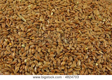 Inseed Background