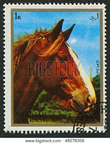 EMIRATE OF SHARJAH - CIRCA 1972: A stamp printed in Emirate of Sharjah shows image of The horse (Equus ferus caballus) is one of two extant subspecies of Equus ferus, or the wild horse, circa 1972.