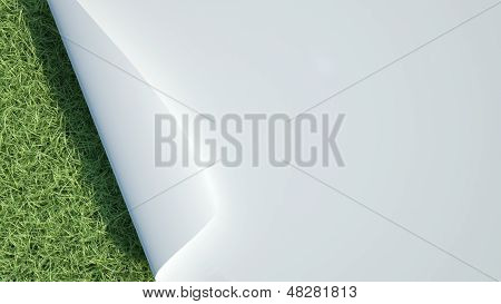 Paper Over Grass