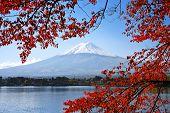 Mt. Fuji and autumn foliage at Lake Kawaguchi. poster