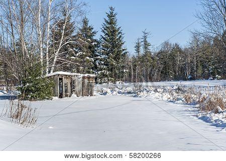 Pretty Winter Picture
