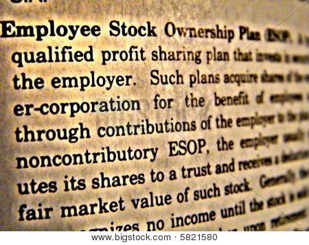 Dictionary Employee Stock Ownership