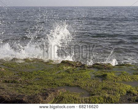 Sea Waves Hitting Rocky Shore